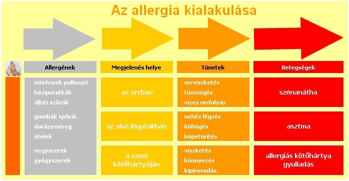 Sör allergén
